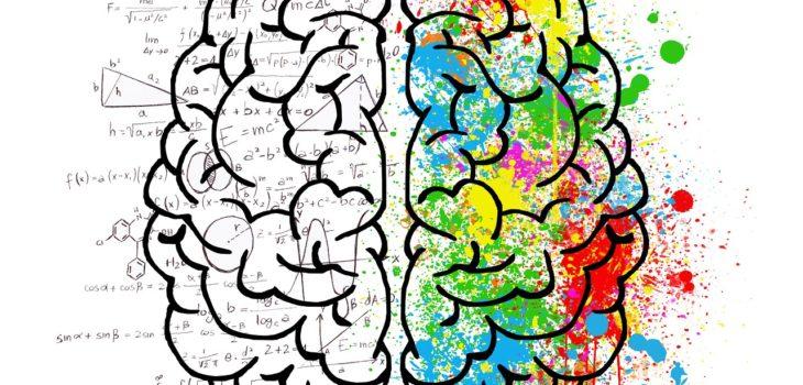 7 необычных факта о человеческом мозге